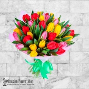 Moldova Spring Flowers #1