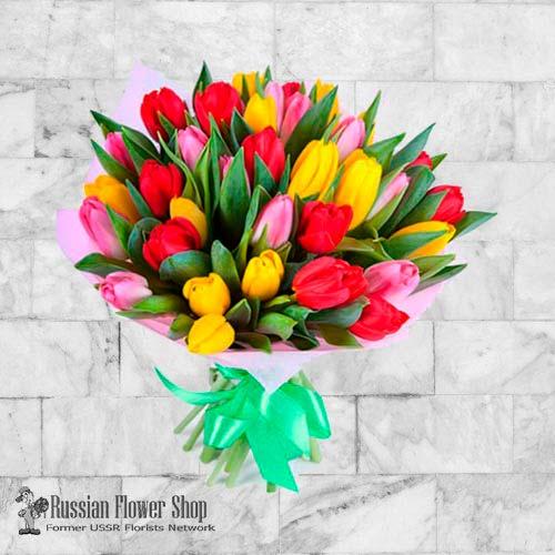 Moldavia Flores de primavera #1