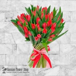 Moldavia Flores de primavera #3