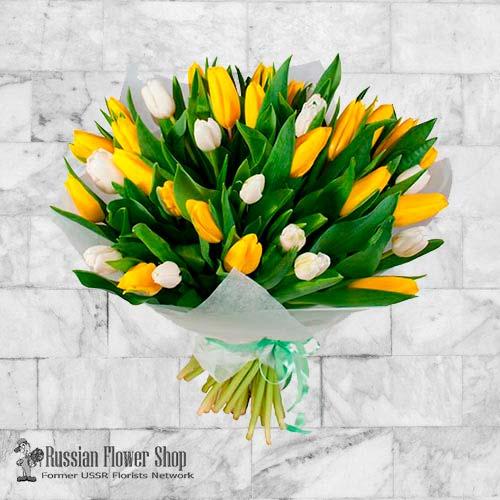 Moldavia Flores de primavera #10