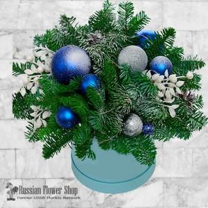 Ukraine Christmas Gift #8
