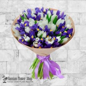 Ukraine Frühlingsblumen # 1