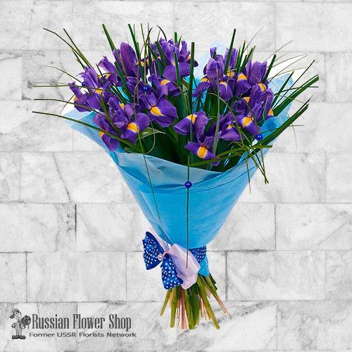 Ucrania flores de primavera #4