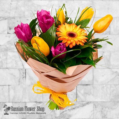 Ukraine Flores de primavera #11