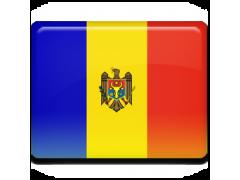 Flowers Moldova